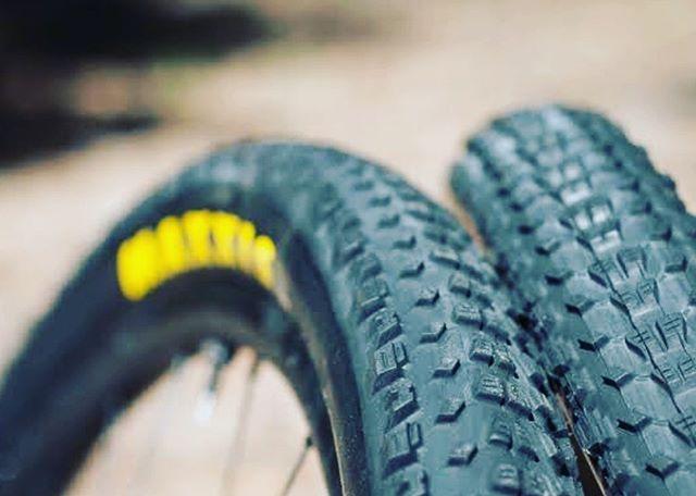 Which tyres will you go for? . . . . @bikedr @dismantleinc @nowheremanbrewery @mixxisbike @cityofarmadalewa #gunutrition @ridemechanic #challengeyourself #supportothers #gravel #gravelgrinder #groadeo #mtb #cx #runwhatyoubrung #deathadder100 #rockettubes