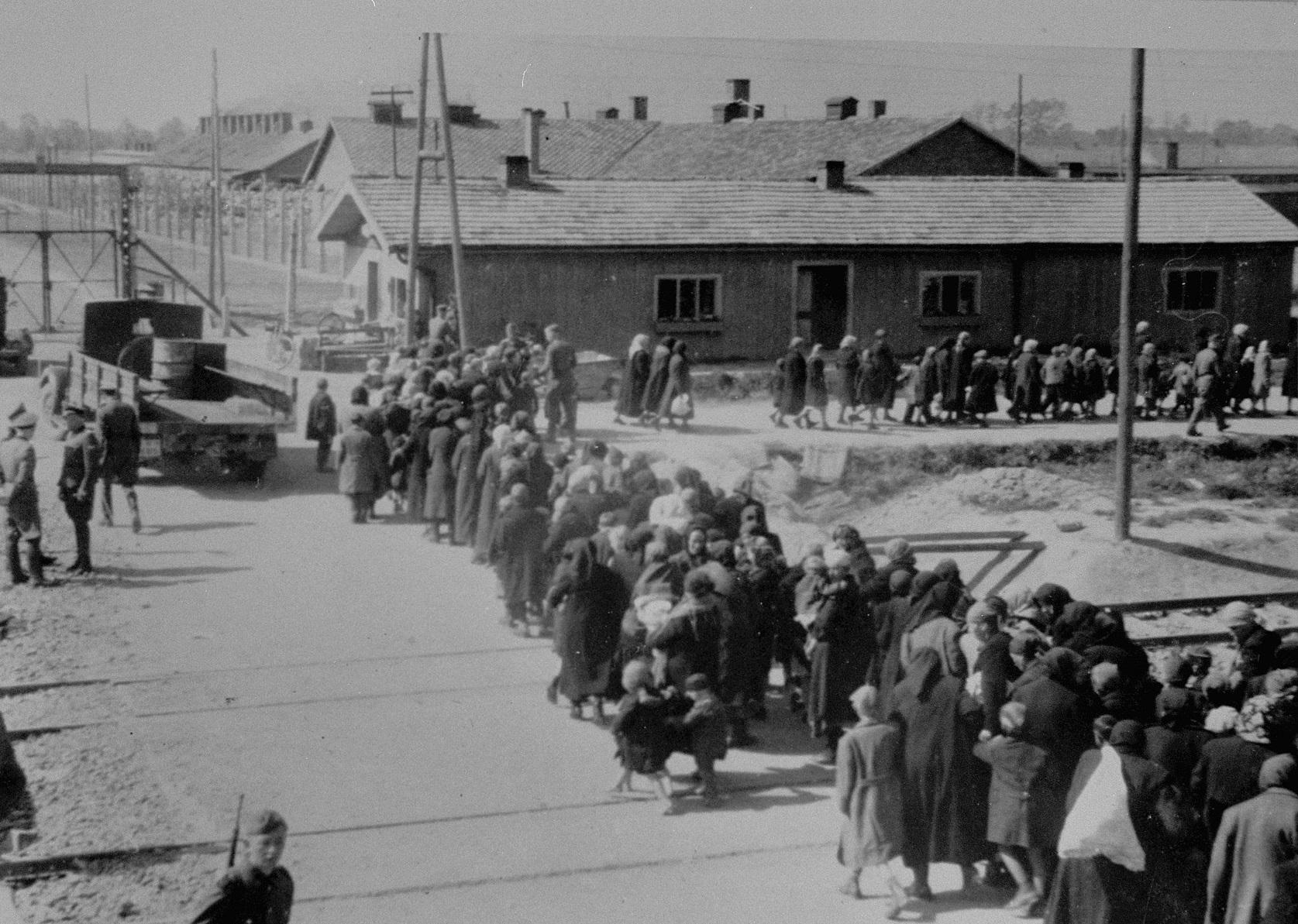 在奧斯維辛集中營裡,估計有110萬猶太人慘遭納粹殺害。圖片來源:E. Hoffmann & B. Walter/Wikimedia Commons