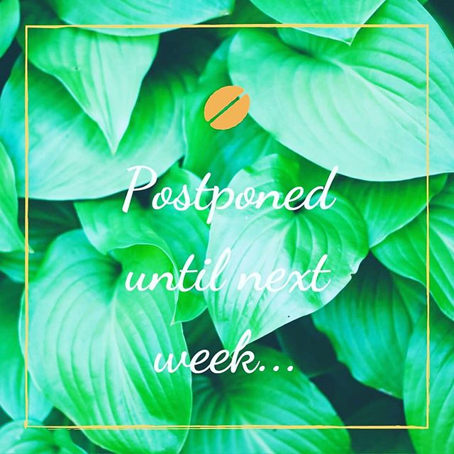 With apologies, Mums Meet is postponed this week due to illness. Have a great Tuesday morning and see you next week 😊🌻