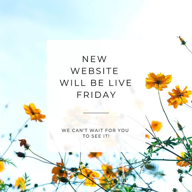 🌸🌼🌻🌺 #Friday #newwebsite #sustainability #chicago #chi #impactearth #impactearthchi #environment #zerowaste #website #launch #friyay #blog #zerowasteblog #goingzerowaste #zerowastechicago #zerowastelifestyle #spring #springlaunch