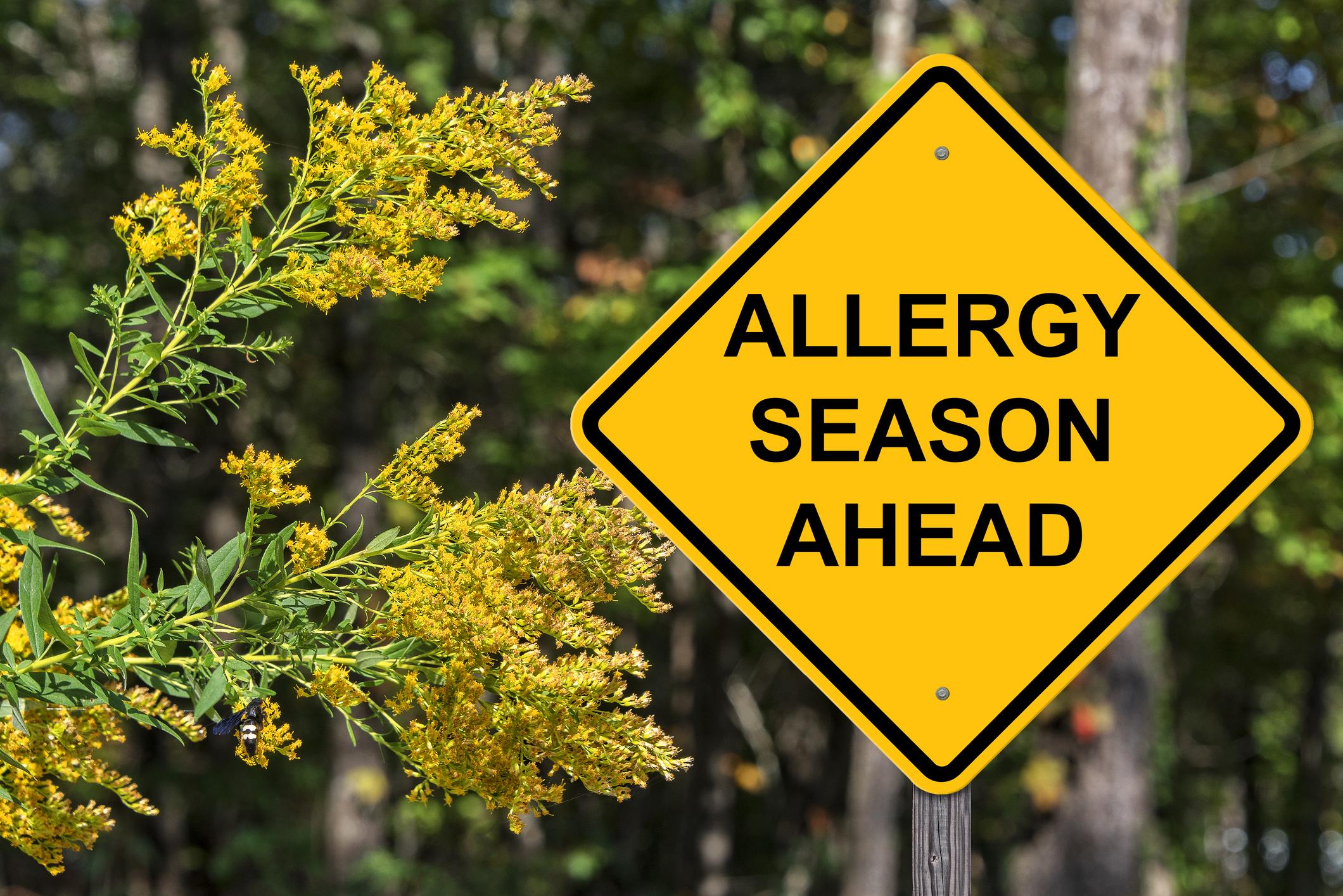 Allergien - müssen nicht sein