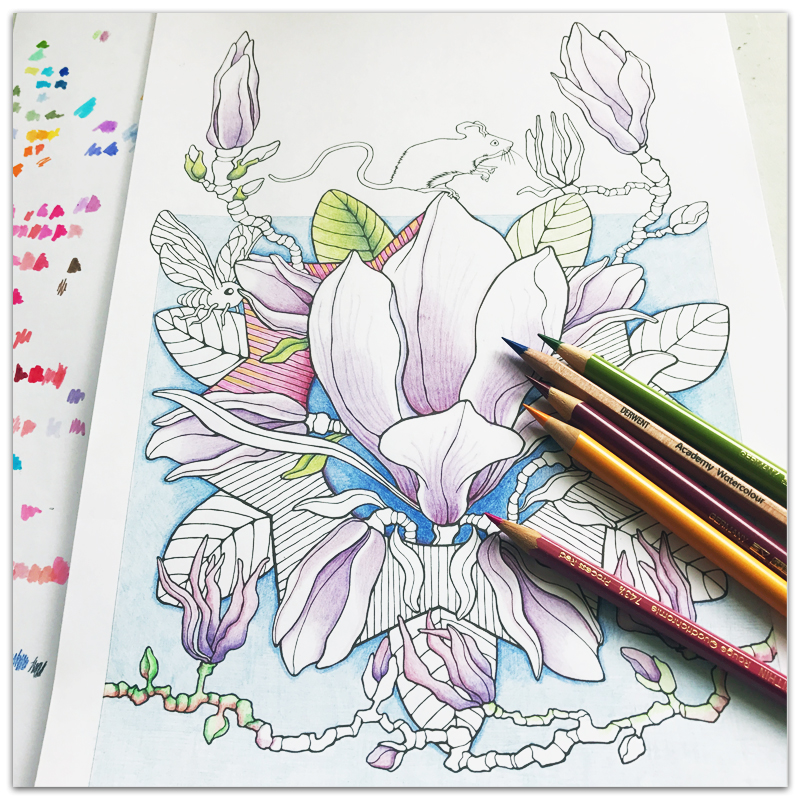 MAGNOLIA MAGIC COLOURIG PAGE