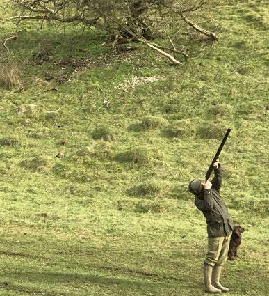 Charles Holland Shooting -