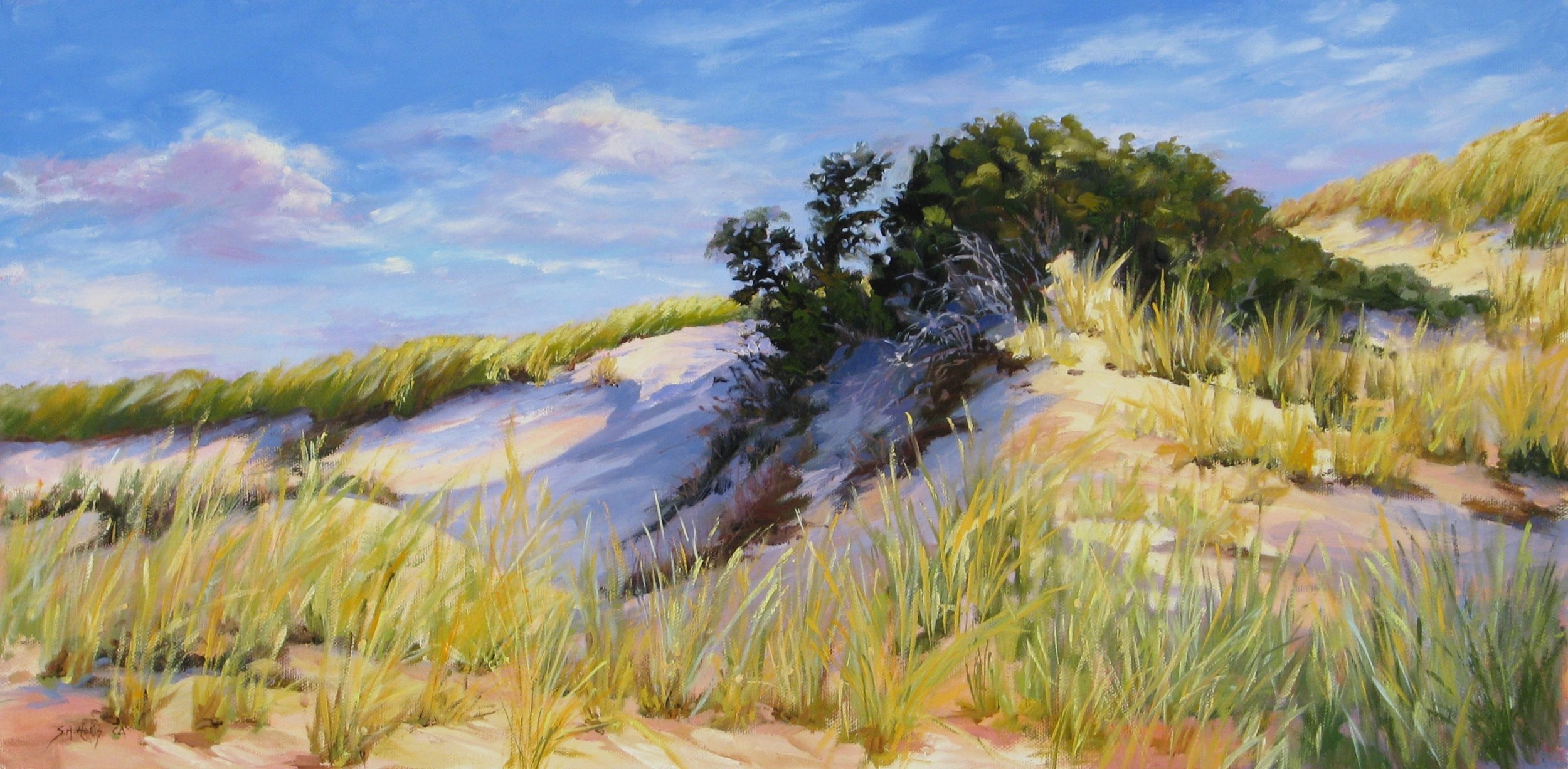 "Shadow in the Dune – 12"" x 24"""