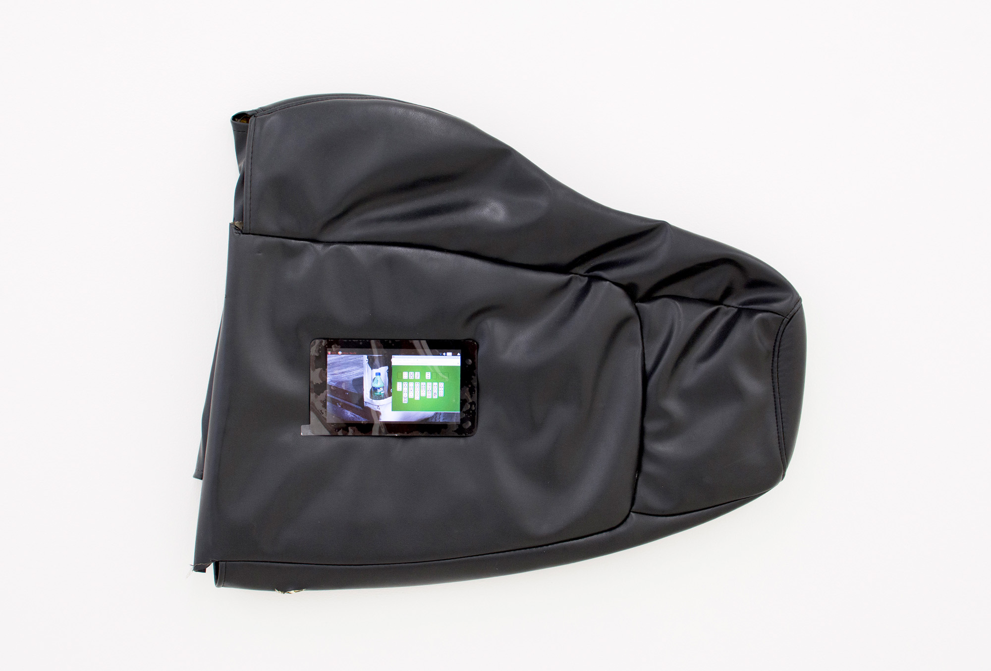 The Self-Aware Slug , 2016, Custom softwear, Linux computer, vinyl