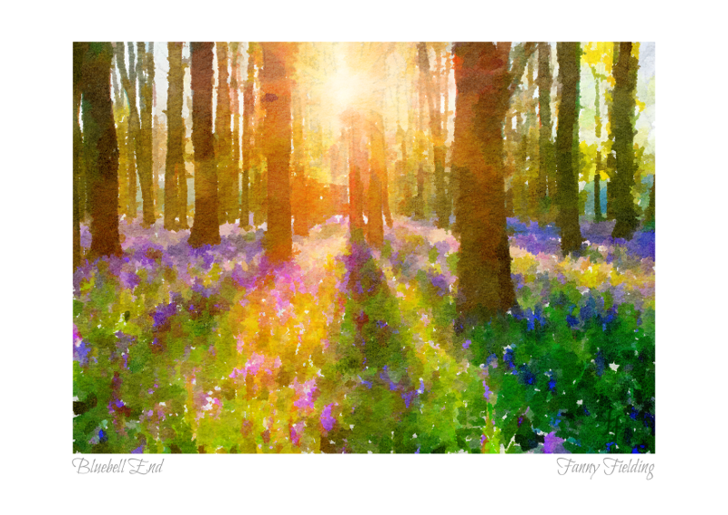 bluebell-end-fanny-fielding.png