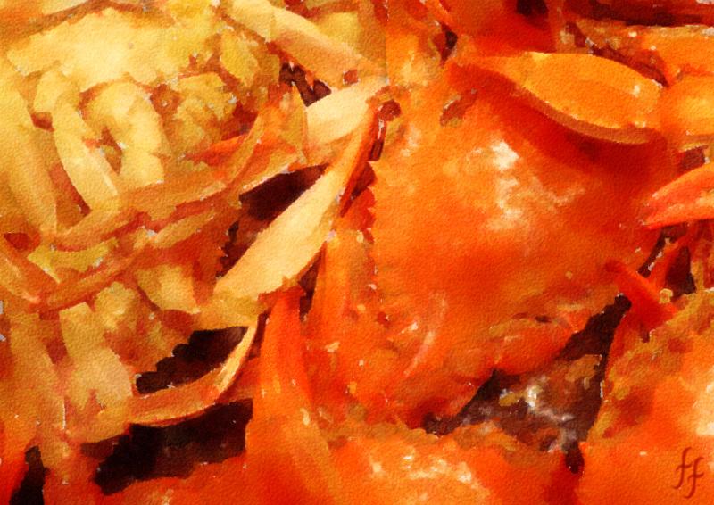 case-of-crabs-fanny-fielding-rude-funny-print-viz-comic-joke-seaside-postcard-british-norfolk.jpg