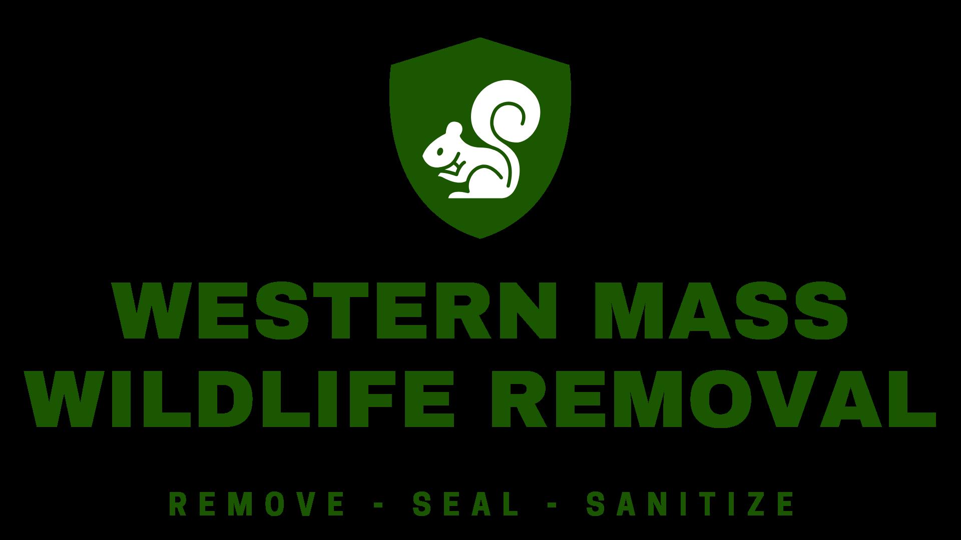 Western Mass Wildlife Removal