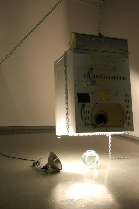 The Zeitgeist is Self-cannibilizing, clamp lamp, fish bowl, beta fish, water, fish food, machine dryer, chain, c-clamp, 2011.jpg