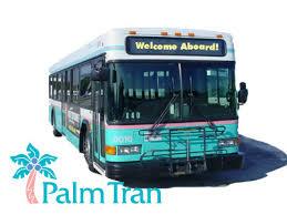 PalmTran_259.jpg