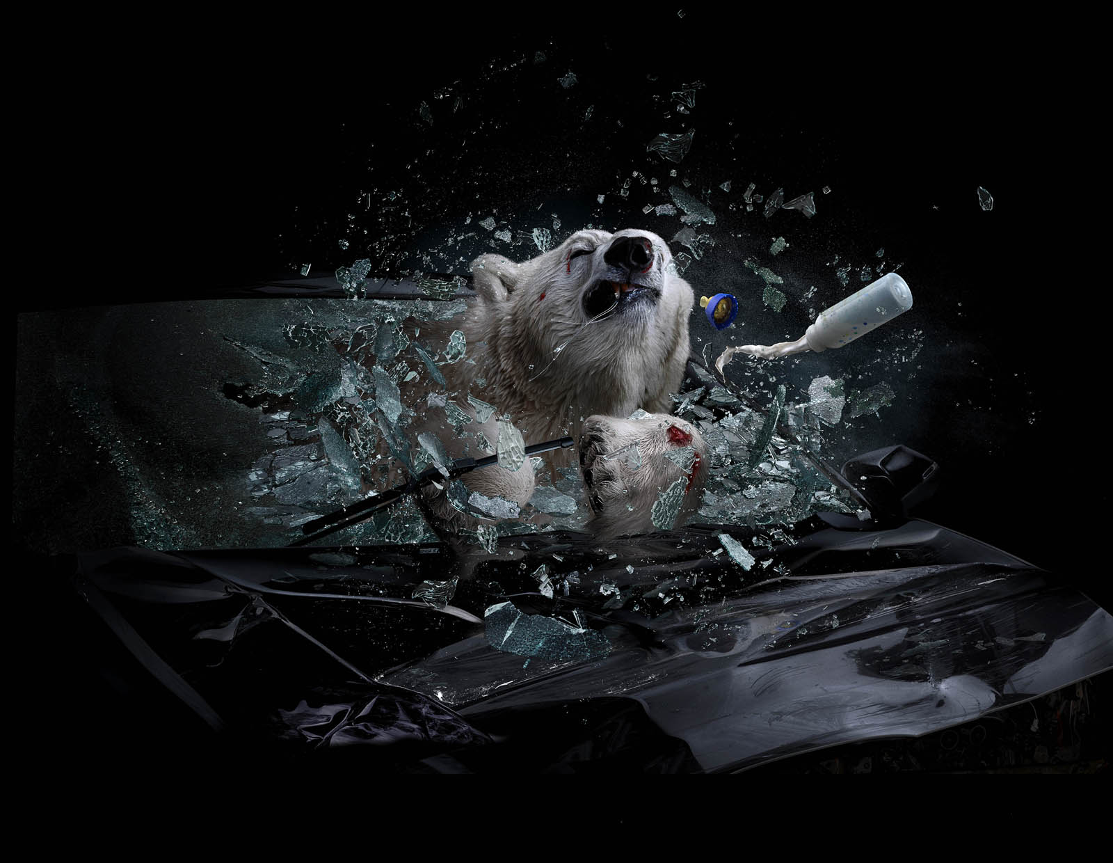 Car Crash BEAR_simplify copy(Resize).jpg