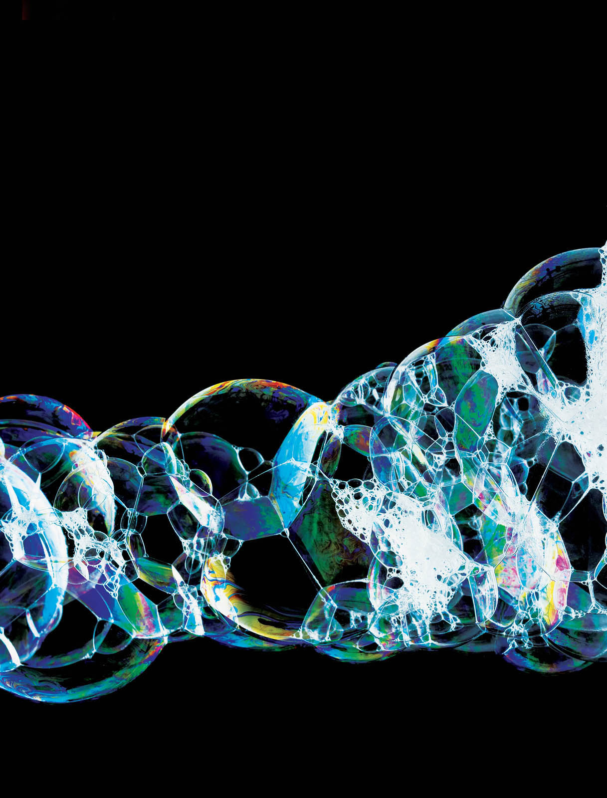 Persil DNA(Resize).jpg