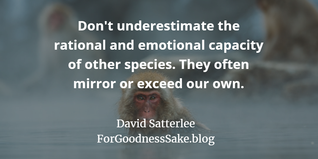 Quote - Don't underestimate the rational and emotional capacity of other species.png