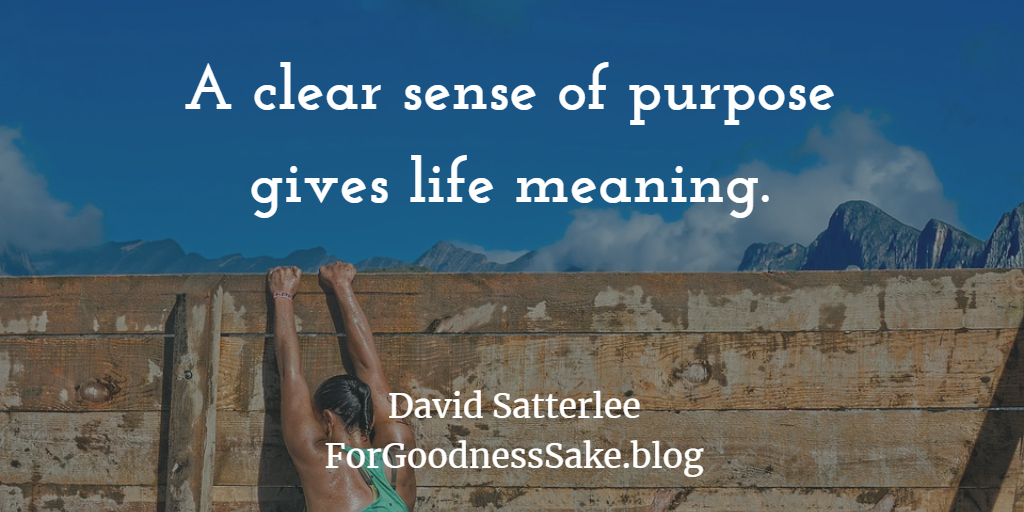 Quote - A clear sense of purpose gives life meaning.png