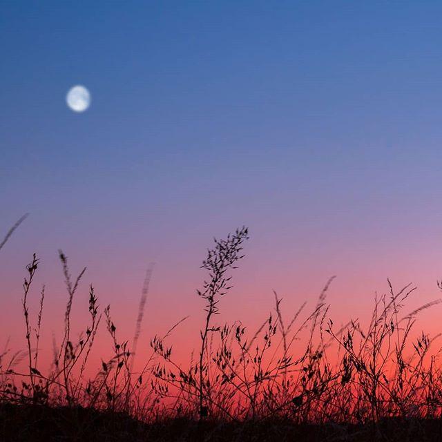 Everything is peaceful. ✨ . Qu'est-ce que j'apprécie ces moments de calme et de tranquillité. Après le couché du soleil, les dernières lueurs de la journée se figent pendant un instant. Un instant où tout s'arrête, permettant de profiter au maximum de ce moment de paix. 🙏