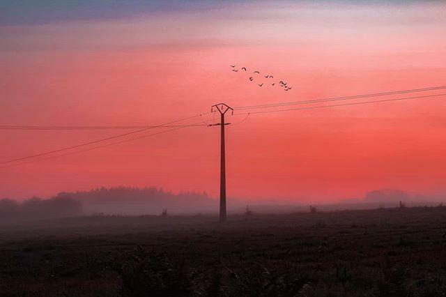 Même si le Sunset reste pour moi mon moment préféré de la journée, le matin est tout aussi apaisant ! 🌄🕊️