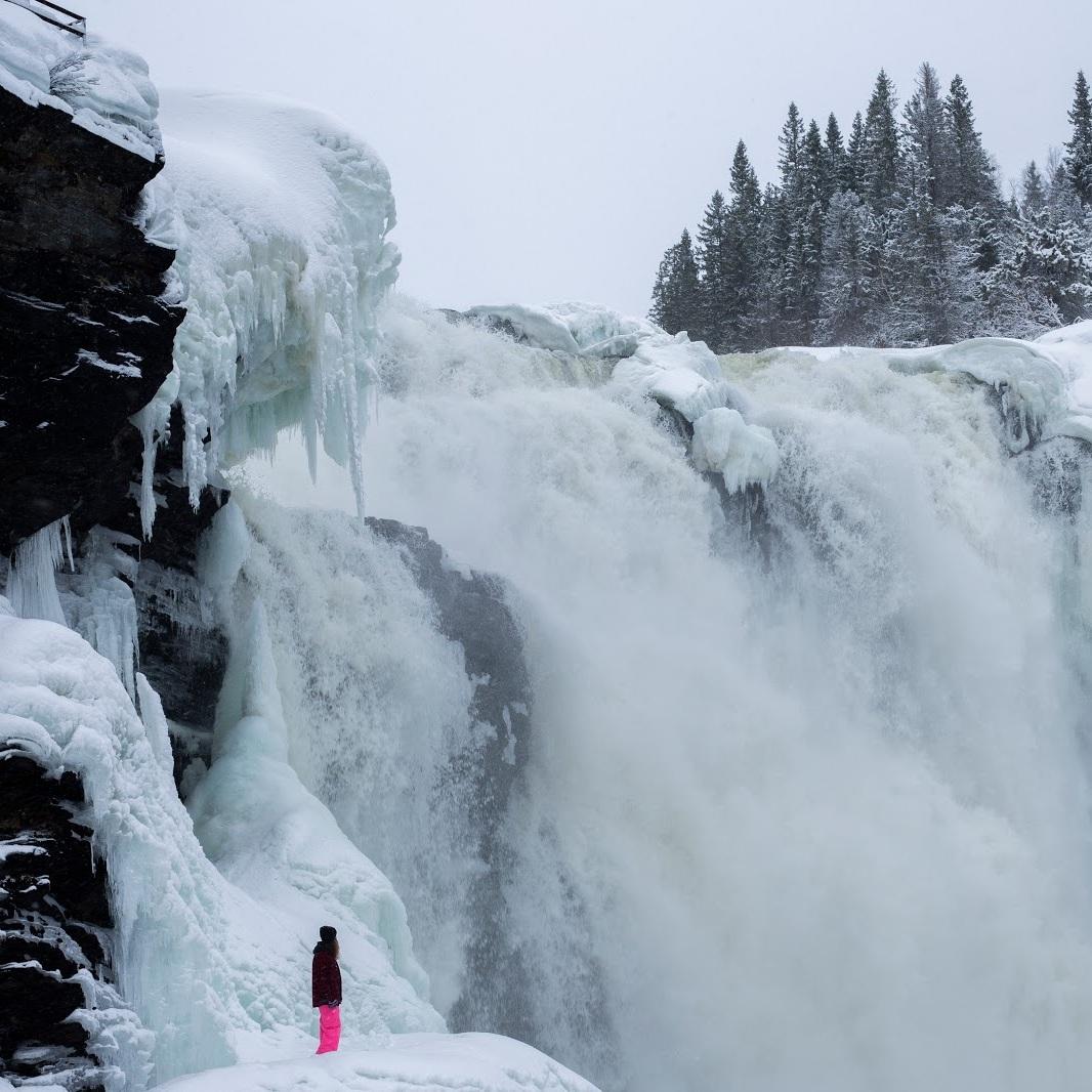 OMVÄG - TÄNNFORSEN, DUVEDTännforsen, Sveriges största vattenfall, är värd en lång omväg då det är en häftig känsla att se hundratals kubikmeter vatten dåna ner. Det är lika fint året om med mycket häftiga isformationer vintertid.Tips inskickat av: Felix Wilhelmzon