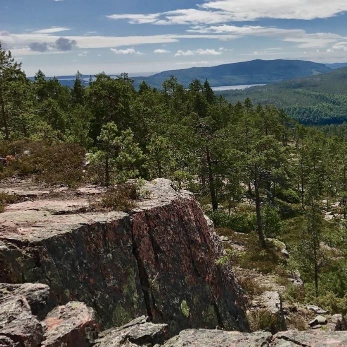 natur - SLÅTTDALSBERGET – SKULESKOGENS NATIONALPARKSkuleskogens nationalpark är ett paradis för den som gillar att vandra. Här finns den berömda Slåttdalsskrevan och med enkel avstickare på vägen kan man njuta av en fantastisk vy över nationalparken. För den som vill dela upp vandringen på två dagar finns det möjlighet att tälta vid Tärnättholmarna. Börja vandringen från entré syd och följ orange markering upp mot skrevan, vik gärna av höger och följ blå markering upp för Slåttdalsberget vid det stora klapperstensfältet.Tips inskickat av: Johan