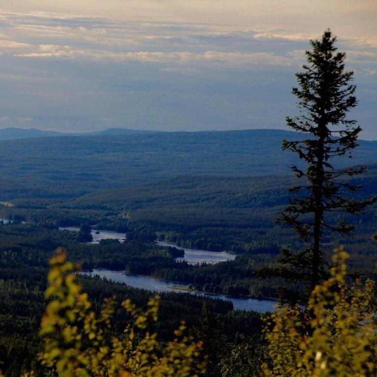 natur - BJÖRKSELE – VINDELÄLVEN, NORR OM LYCKSELEOmrådet kring Vindelälven bjuder på vacker natur, fiske och friluftsliv. Från en utsiktsplats som nås från Björksele har man möjlighet att se älven från ovan och få en vacker vy av den djupa Norrlandsskogen.Tips inskickat av: www.instagram.com/emaq