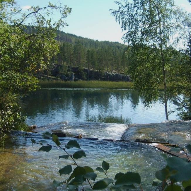 BAD - FORSAFALLET, FORSALEDENOm du tar av på vägen mellan Pilgrimstad och Revsund så finner du Jämtlands pärla när det kommer till sommarbad och vacker miljö. Forsafallet och Laxtrappan är ett naturligt äventyrsbad med naturliga bassänger, vattenrutschbanor, badvänliga små strömmar och vattenfall.Tips inskickat av: Niklas Adamsson