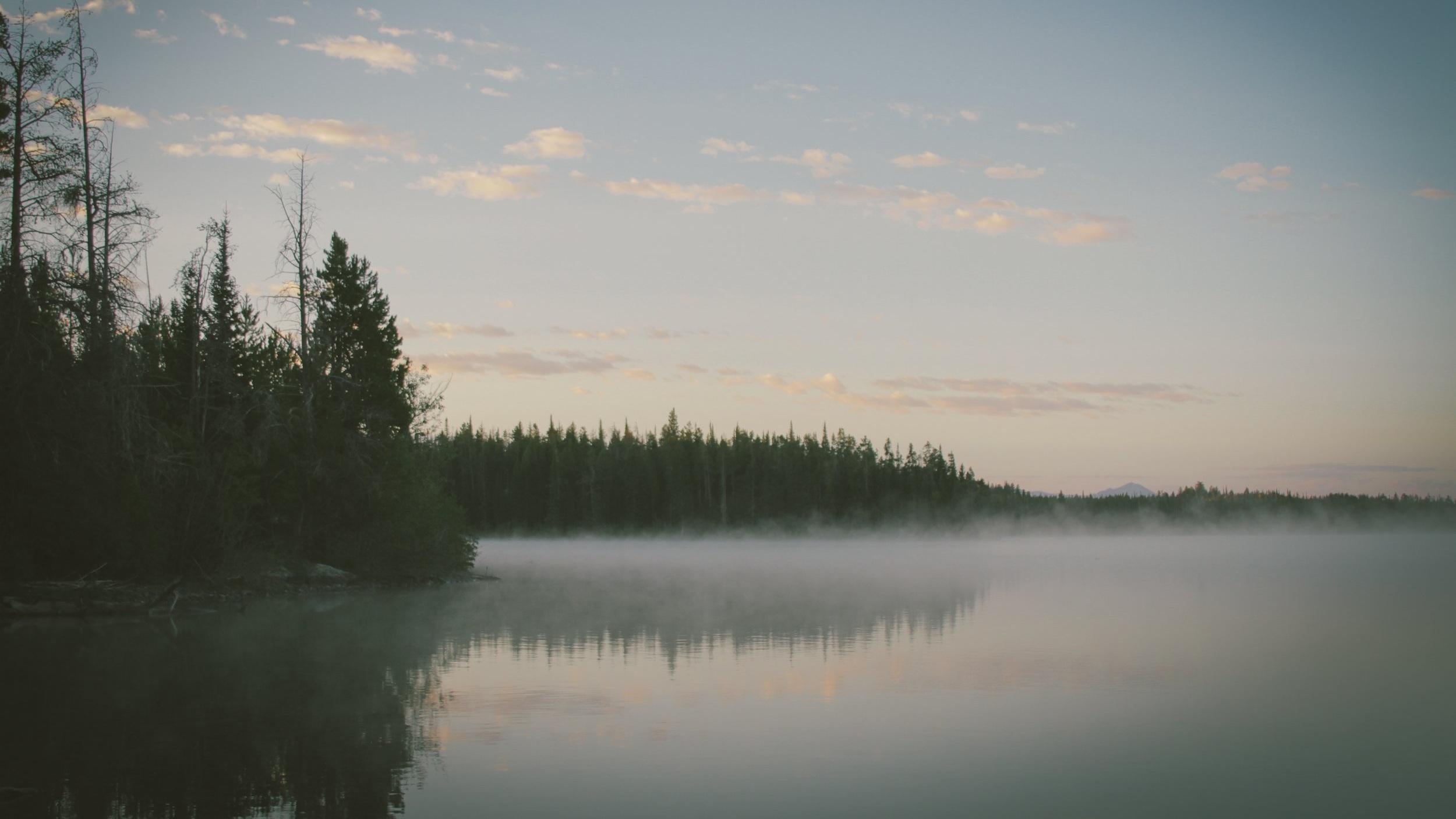 natur -