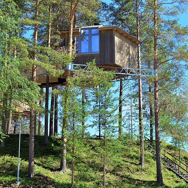 SEVÄRDHET - ÖVERNATTA I ETT FÅGELNÄSTEPå Granö Beckasin kan du övernatta i spektakulära fågelnästen placerade högt uppe bland träden. Här erbjuds också roliga sommaraktiviteter så som flottfärd, kickbike med hund, midnattspaddling, yoga och älgsafari.Tips inskickat av: Visit Umeå