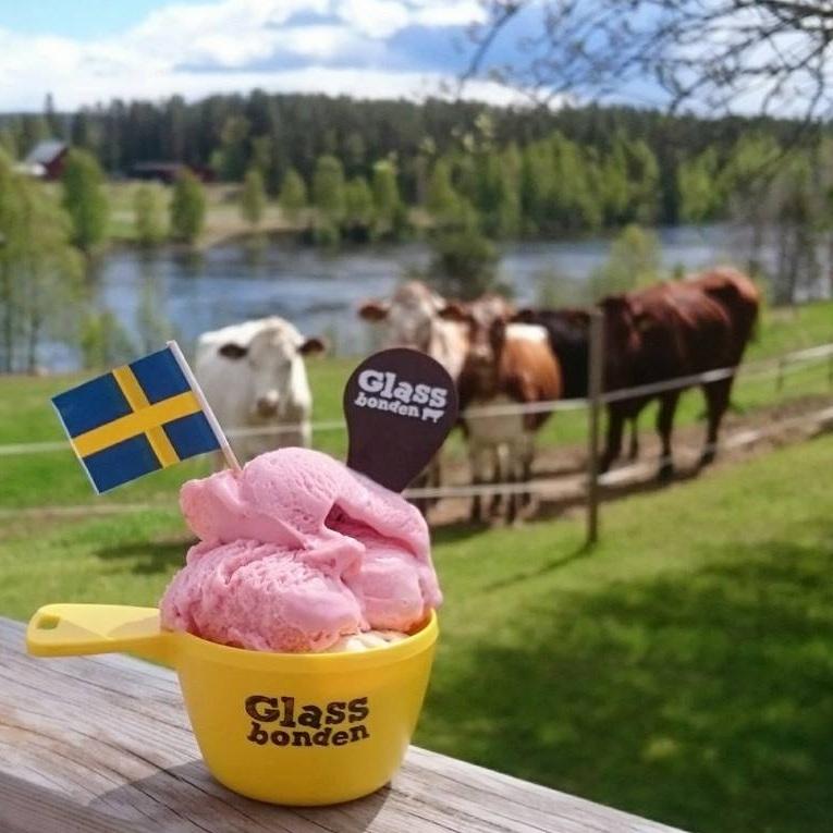 BARNVÄNLIGT - BESÖK EN GLASSBONDESommar= glass. Gör en glassig utflykt till glassbonden i Västra Selet, Vännäs. Här kan du frossa i glass som tillverkas av mjölken från gårdens egna fjällkor.Tips inskickat av: Visit Umeå
