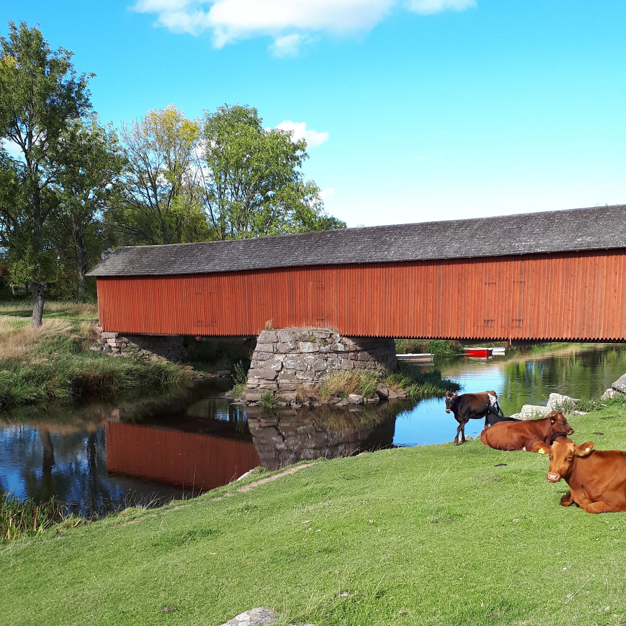OMVÄG - VAHOLMS BROHUSSveriges enda brohus. Det är så det är, en bro med ett hus på. Ca 300 meter norr on samhället Tidan ligger brohuset på vänster sida av vägen.Tips inskickat av: Alvar Holmgren