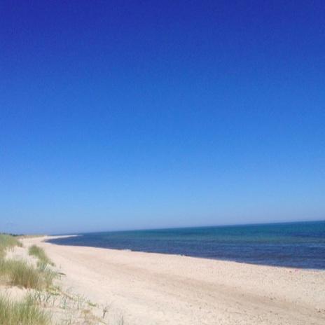Natur - FÅRÖ SKÄR: SOM UTOMLANDS FAST HEMMAEfter båttur till Gotland fortsätter man med färja över till Förå. Genom vacker natur går bilturen och stanna sedan i skogen. gå så långt det bara går, vada genom kritvit sand med solen strålandes genom tallkronorna. Sen öppnar sig landskapet och allt du ser är kritvit sand så långt ögat kan se och hav så blått att det tåras i ögonen. Det är långt dit och svårt att hitta. Men när du är där, då är det värt allting!Tips inskickat av: www.instagram.com/helenaforss_frokenesther