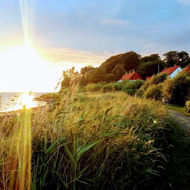 natur - BLOMMOR MÖTER HAVUnderbar vandrings eller cykelled med Öresund på ena sidan och blommor och natur på den andra.Det finns camping ett stenkast bort.Tips inskickat av: Milada Holmgren