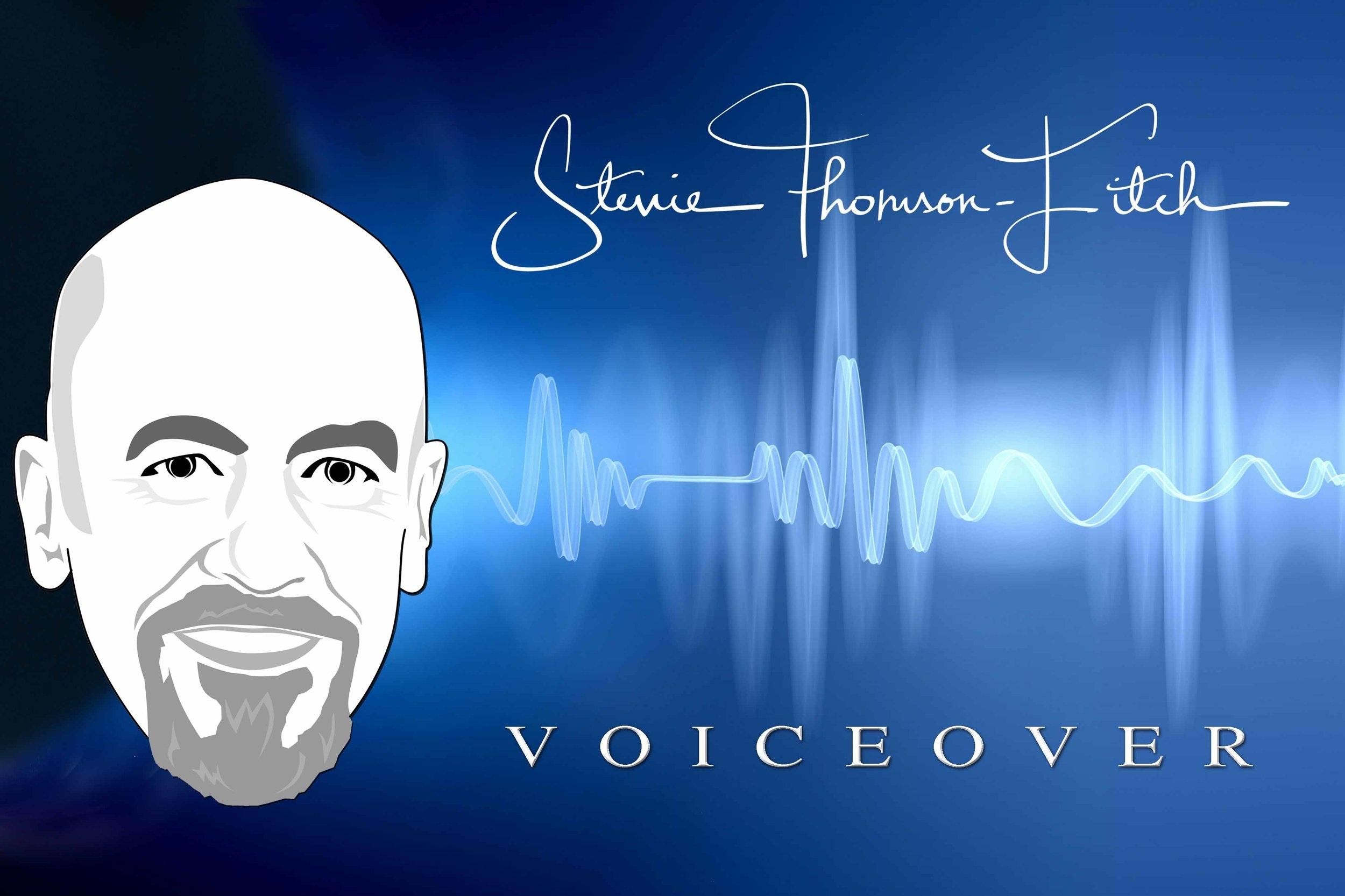 Stevie's Voice Demos - Click here to listen