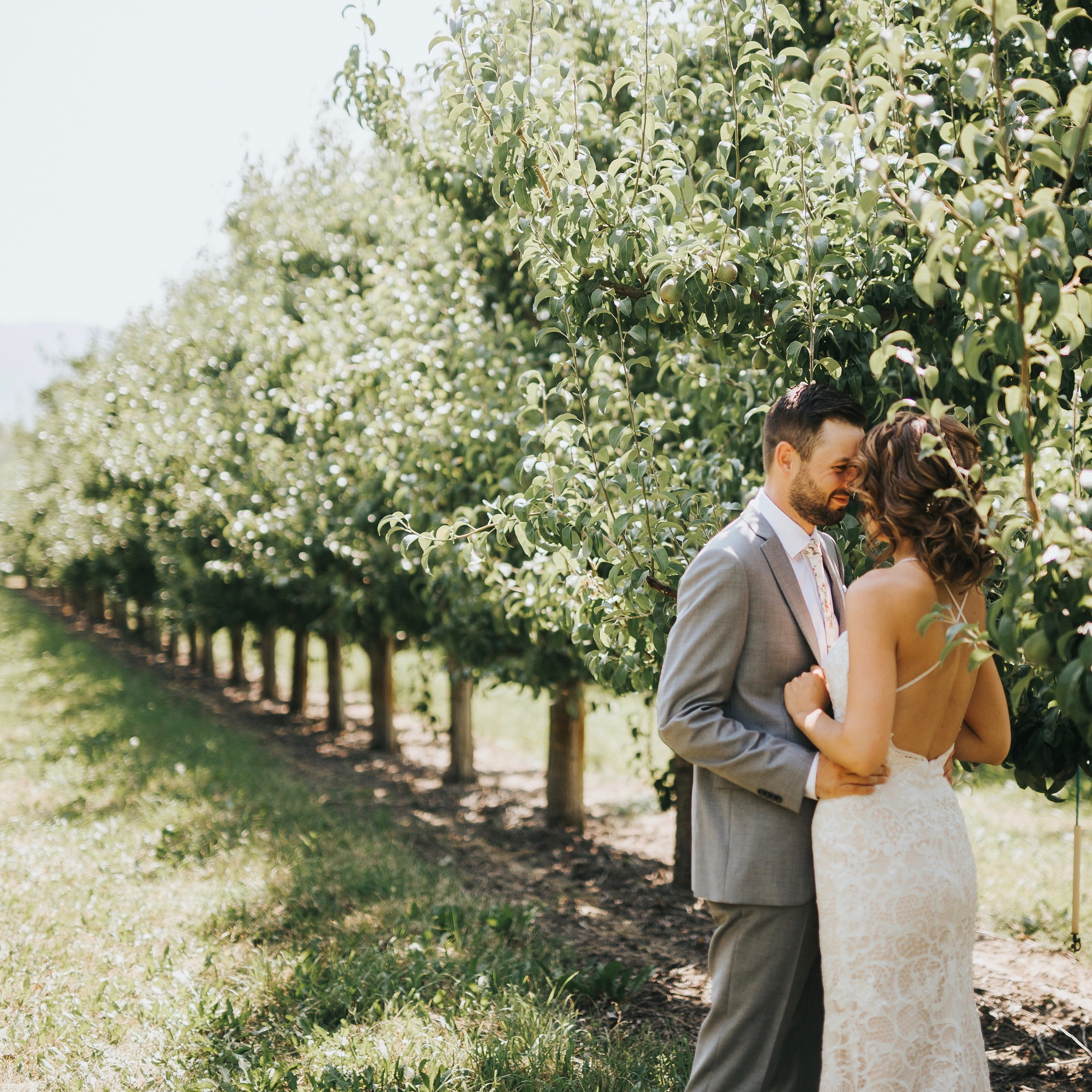 Penticton Orchard Wedding Okanagan BC.jpeg