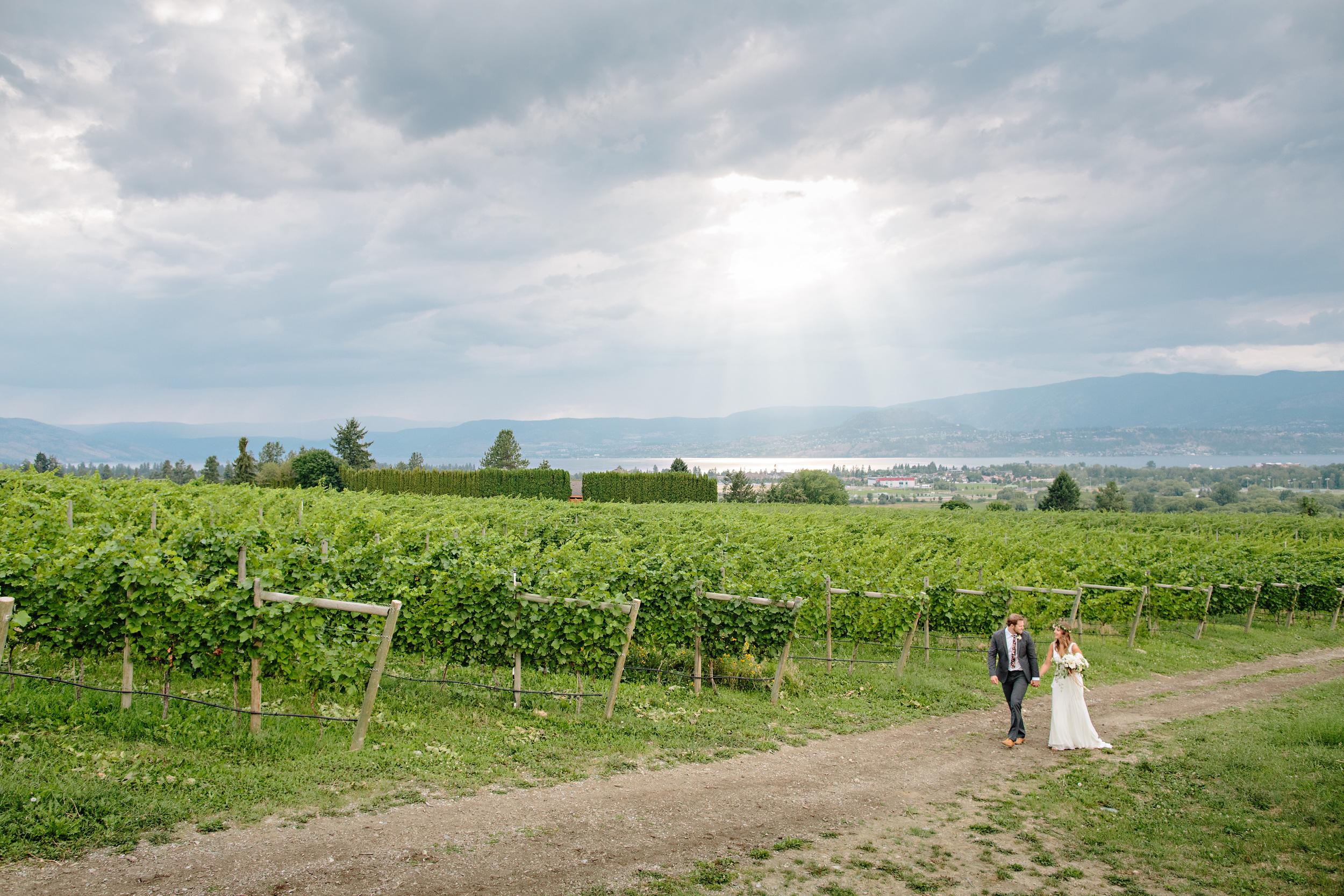 Okanagan+Vineyard+Wedding.jpeg