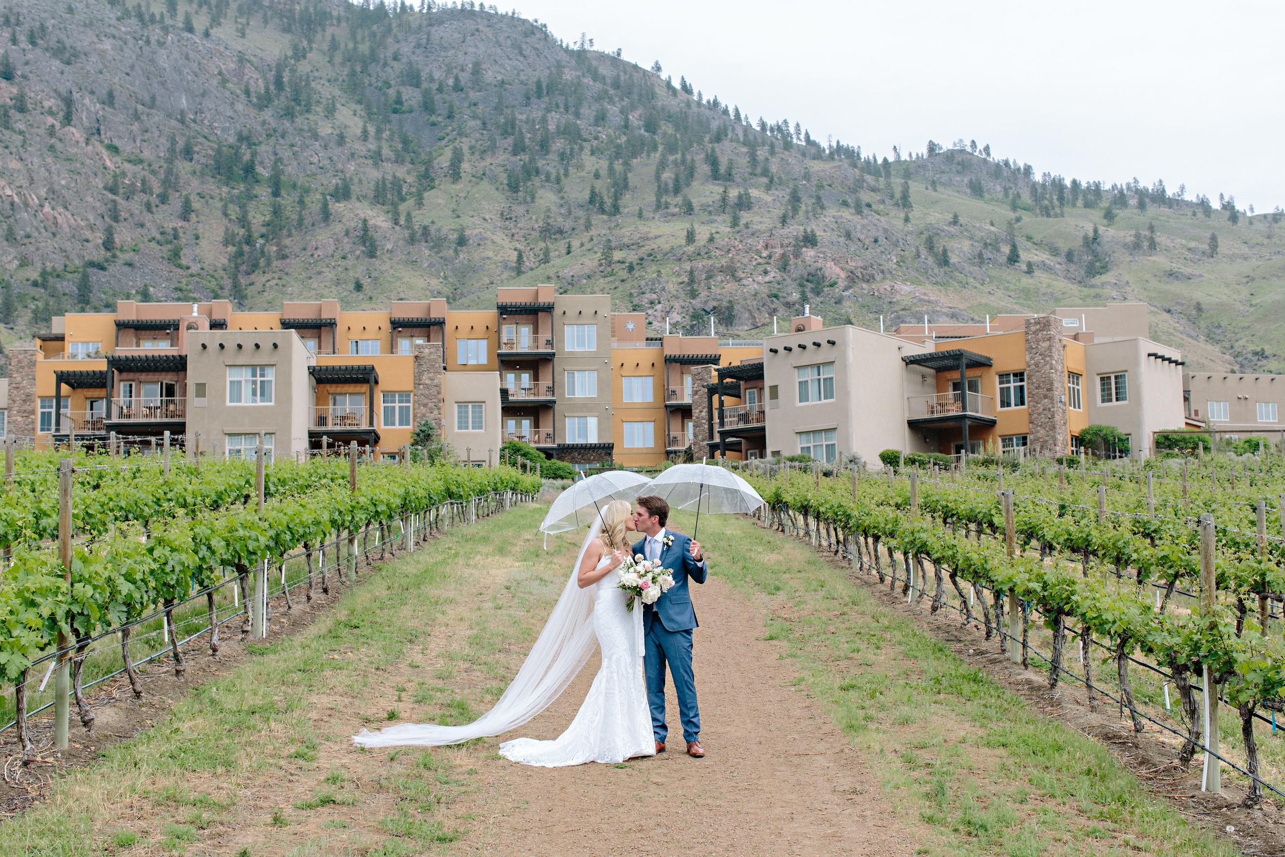 Kelowna Vineyard Wedding .jpg