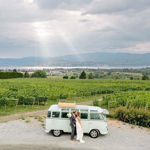 Kelowna+Winery+Vineyard+Summer+Wedding.jpg