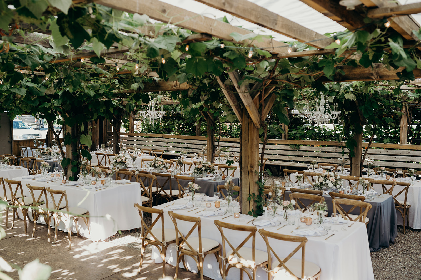 Okanagan Orchard Wedding Reception.jpg