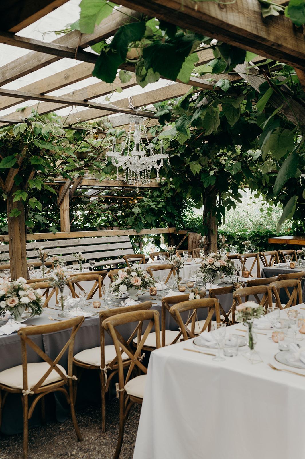 Gatzke Orchard Wedding Reception.jpg