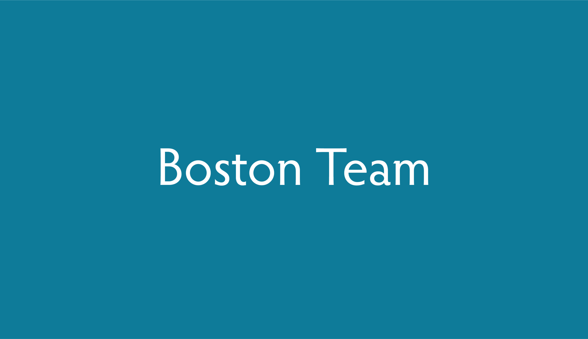 bostonteam.png