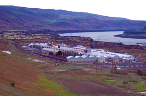 Goldendale_GAS2.png