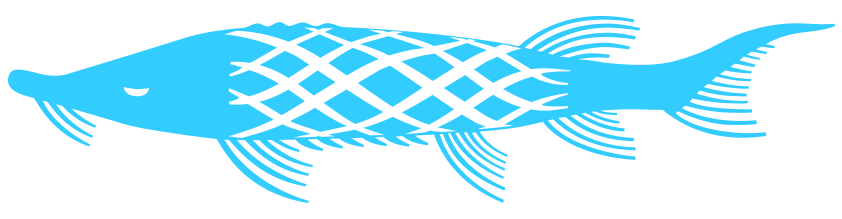 fish blue.png