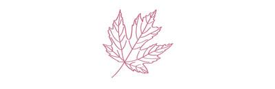 leaf-divider.jpg