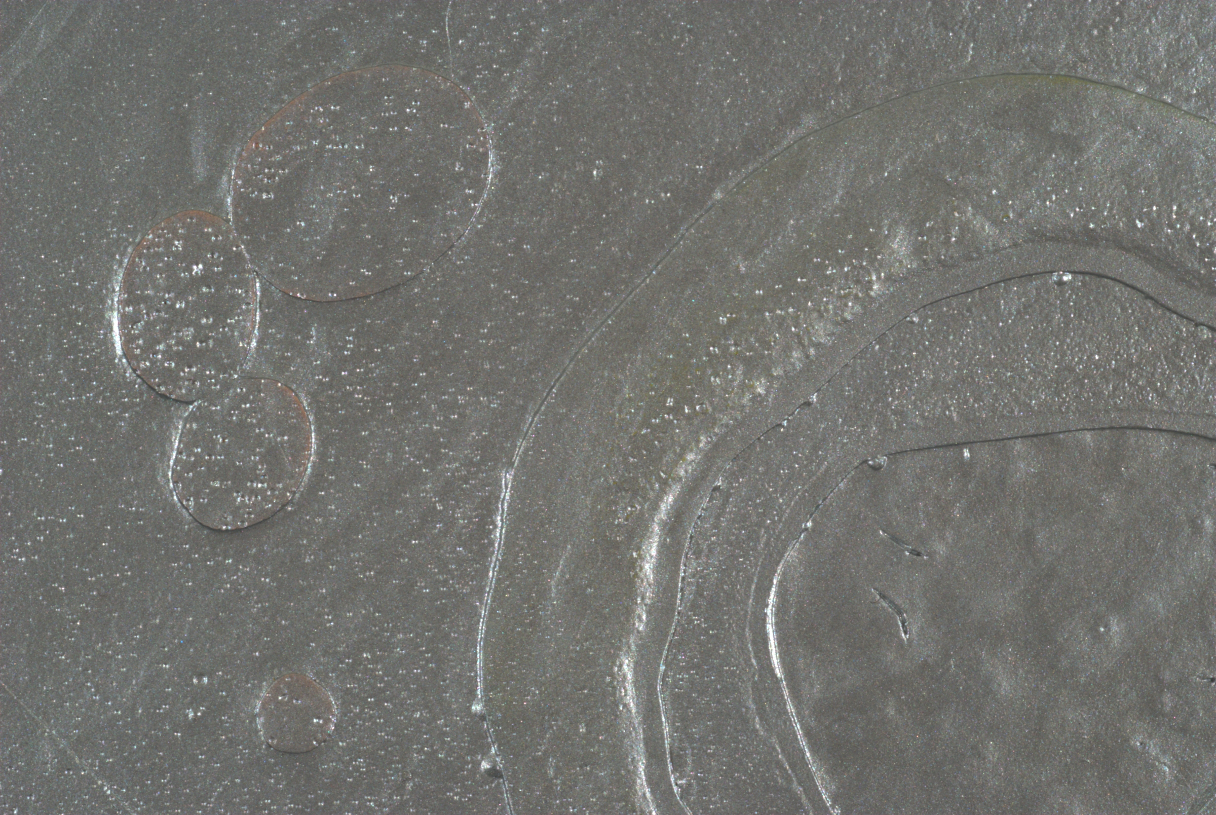 Detail of Silver Cell Pour