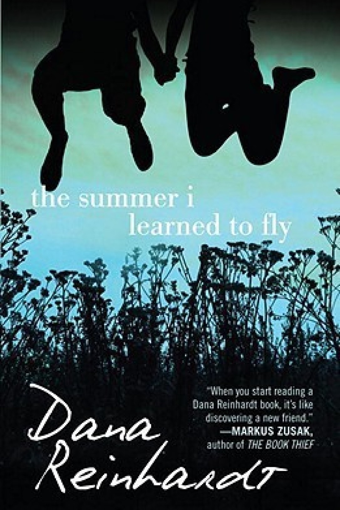 The Summer I learned to Fly. Cover Art by Ericka O'Rourke