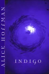 Ingigo. Cover Art by Ericka O'Rourke
