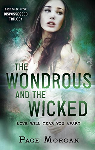 The Wondrous and the Wikcked. Cover Art by Ericka O'Rourke