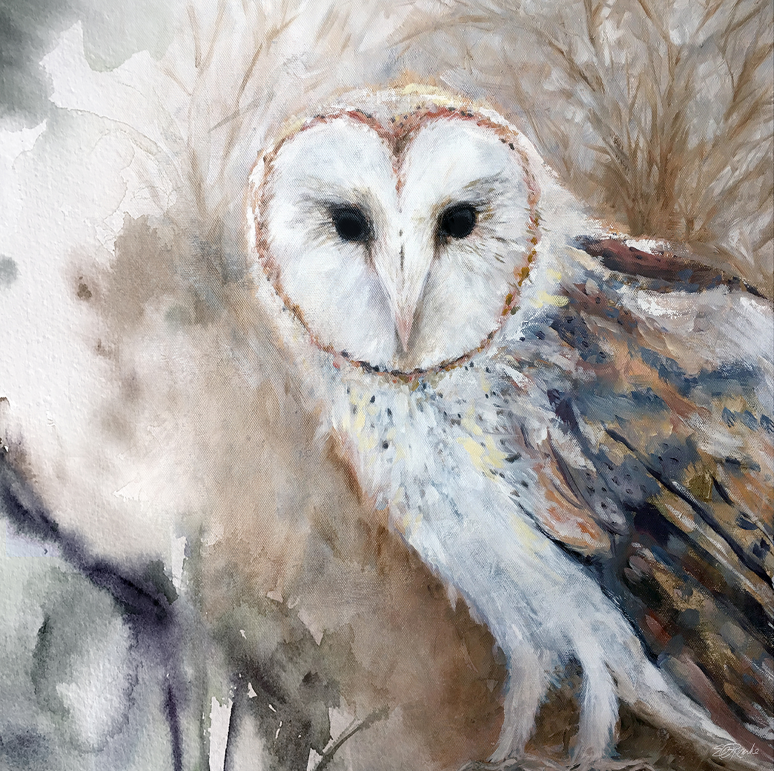 """""""Barn Owl"""" 20"""" x 20"""" oil on gallery wrapped canvas"""