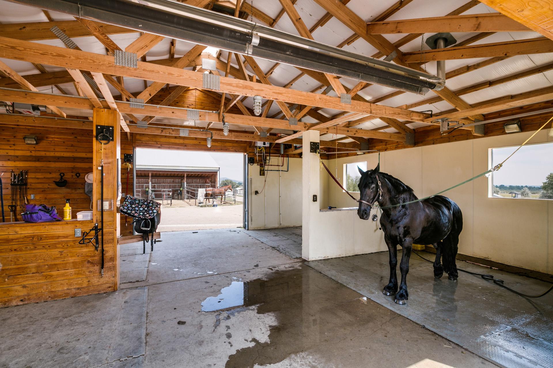 grooming barn.jpg