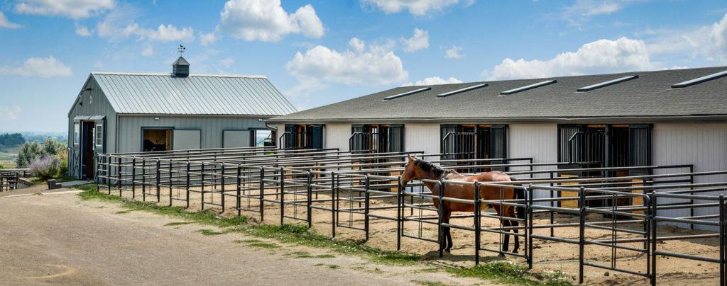 main barn exterior  2.jpg
