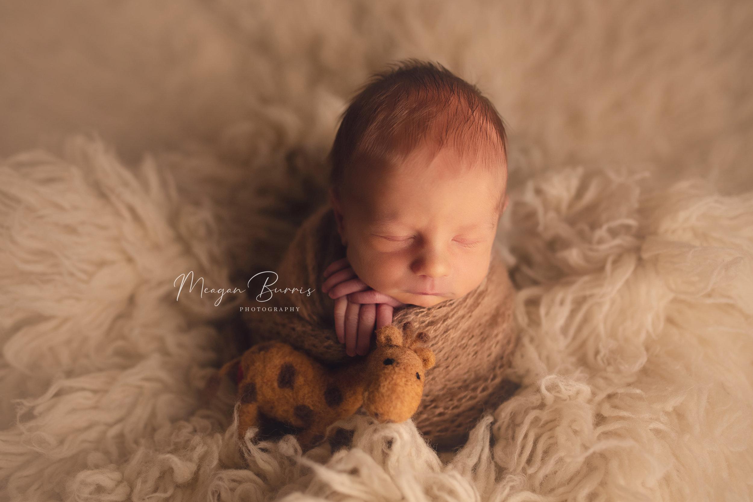 ziek_ mooresville, in newborn photographer127.jpg