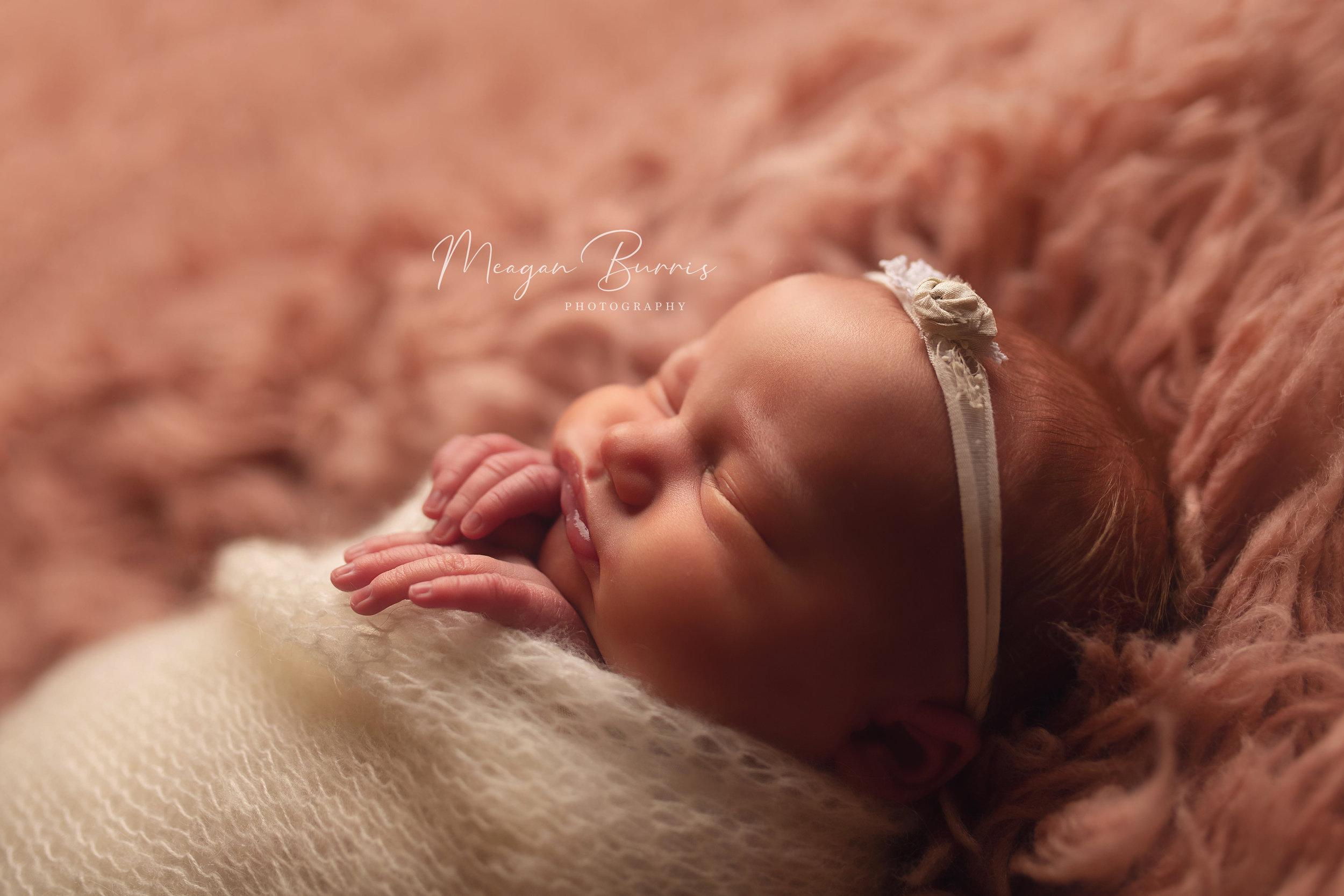 vera_rose_carmel indiana newborn photographer2.jpg